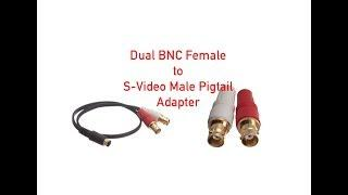 Dual BNC Female to S-Video Male Pigtail Adapter - 18 Inch P#875