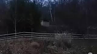 Goat jumps out of shed 4ft and rams through field fence at top