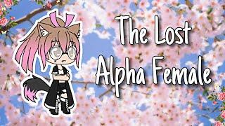 The Lost Alpha Female~~~ Gachaverse mini series part 1