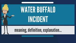 What is WATER BUFFALO INCIDENT? What does WATER BUFFALO INCIDENT mean?
