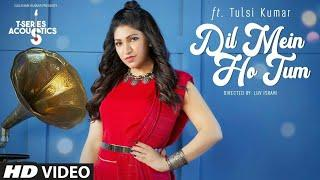 Dil Mein Ho Tum: Female Version | TULSI KUMAR |T-Series Acoustics| WHY CHEAT INDIA | Bollywood Song