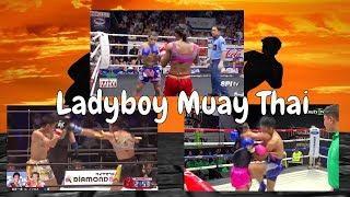 Transgender Female Fighters Doing Muay Thai - Let's Examine