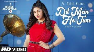 Dil Me Ho Tum - Tulsi Kumar | Official Video | Why Cheat India | Female Version | Latest Songs 2019
