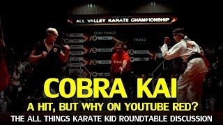Cobra Kai a hit, but why release it on Youtube Red? The Karate Kid Roundtable Discussion