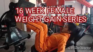 16 week Female weight gain Series