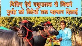 Golu Dairy Farm. Village - Didwari (Panipat). Haryana. Owner - Narender Singh