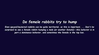 Do female rabbits try to hump