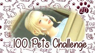 The Sims 4 Indonesia : 100 Pets Challenge - Ram Rem~????20