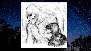 COUPLE WATCHES AFFECTIONATE MALE AND FEMALE SASQUATCH