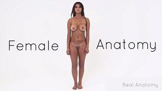 Real Female Anatomy - The Perfect Female Body Tour
