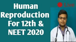 Human Reproduction class 12 and NEET 2020 | Female  reproductive system | Fallopian tube ( part 7)