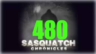Sasquatch Chronicles 2019// SC EP:480 Female Bigfoot stalks and kills a hog