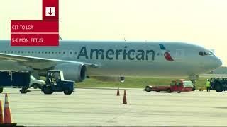Fetus found on American Airlines flight out of Charlotte