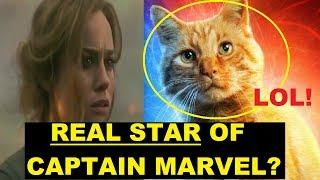 "A CAT Is Captain Marvel's STAR, According To Reviewers? Marvel's First-Of ""Female"" Movie? LOL"