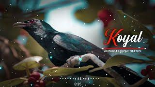 Bole Jo Koyal Bago Me   New Female Version Love WhatsApp Status Video 2019 New Love Song Ringtone