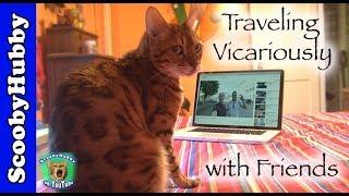 Traveling Vicariously with Friends — Cat Clips #340