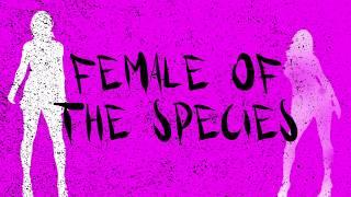 Space - Female of the Species  (Official Lyrics Video)