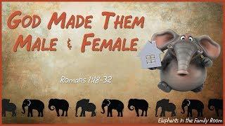 """God Made Them Male & Female"""