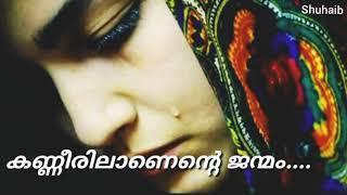കണ്ണീരിലാണെന്റെ ജന്മം| New sad female malayalam status video 2018