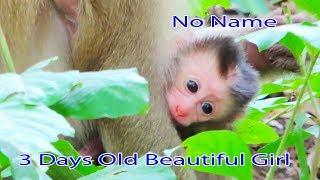Surprise Newborn Pigtail Baby 3 Days Old Is A Female So Beautiful &  Alissa Try To Let Baby To Walk
