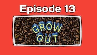 GROW OUT EPISODE 13