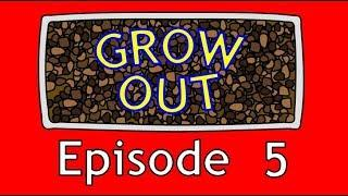 GROW OUT EPISODE 5