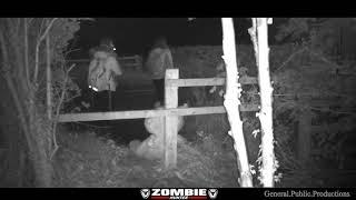 Trail Camera Catches Female Wood Zombies Freak Out Over Teddy!