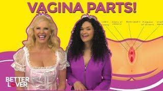 Vagina Parts